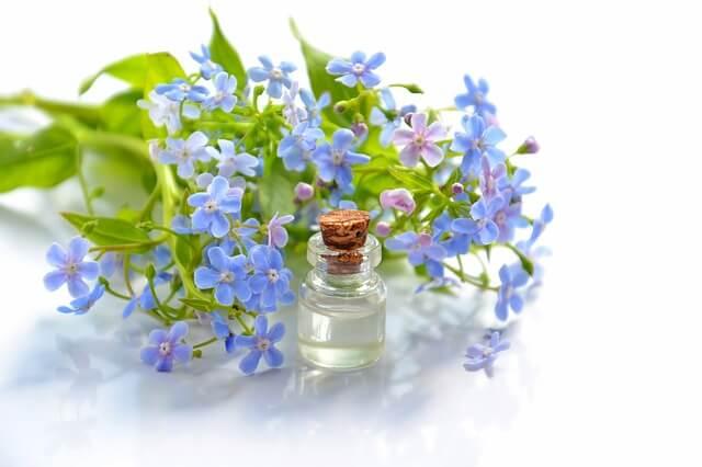 L'aromathérapie, ou l'art du soin par l'essence des plantes