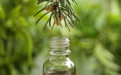 Les 12 huiles essentielles pour bien aborder l'hiver
